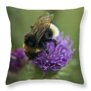 Bumble Bee II Throw Pillow