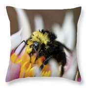 Bumblebee Attacking Flower Throw Pillow