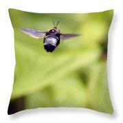 Bumblebee Midair Throw Pillow