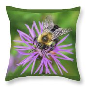 Bumblebee On A Purple Flower Throw Pillow