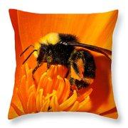 Bumblebee On Flower Throw Pillow