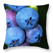 Bunch Of Blueberries Throw Pillow