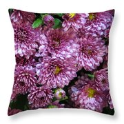 Bunch Of Chrysanths Throw Pillow