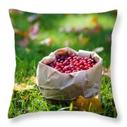 Bunch Of Cranberries Throw Pillow