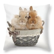 Bunnies A Basket Throw Pillow