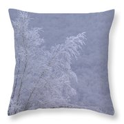Burden Of Winter Throw Pillow