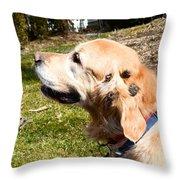Burdock Burs Throw Pillow