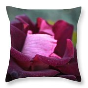 Burgundy Velet Throw Pillow