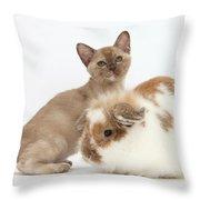 Burmese Kitten And Rabbit Throw Pillow