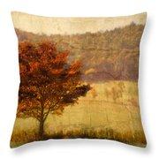 Burning Bush Throw Pillow by Debra and Dave Vanderlaan