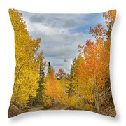 Burning Orange And Gold Autumn Aspens Back Country Colorado Road Throw Pillow