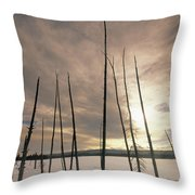 Burnt Pieces Of Black Spruce, Boggy Throw Pillow by Darwin Wiggett