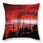 Burnt Trees Against A Sunset Throw Pillow