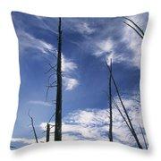 Burnt Trunks Of Black Spruce, Boggy Throw Pillow by Darwin Wiggett