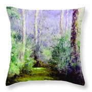 Bush Trail At The Afternoon Throw Pillow