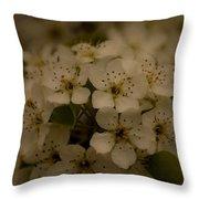 Bushel Of Flowers Throw Pillow