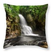 Bushkill Waterfalls Throw Pillow