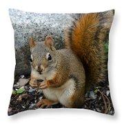 Bushy Tail Throw Pillow