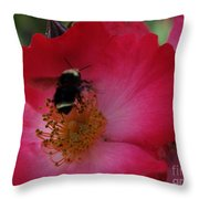 Busy Afternoon Throw Pillow
