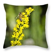 Busy Bee On Yellow Wildflower Throw Pillow