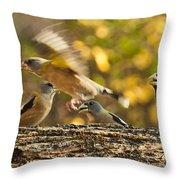 Busy Birds Throw Pillow
