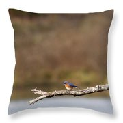 Busy Bluebirds - Three Overlooking The Lake Throw Pillow