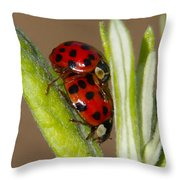 Busy Bugs Throw Pillow