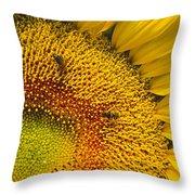 Busy Sunflower Throw Pillow