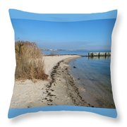 Butler Beach Throw Pillow