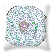 Buttercup Ranunculus Young Root Throw Pillow