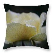 Butterdrops Throw Pillow