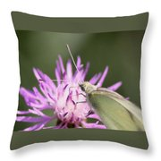 Butterfly - Plain And Simple Throw Pillow