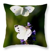 Butterfly - Visiting Throw Pillow