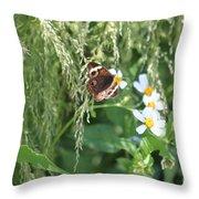 Butterfly 11 Throw Pillow