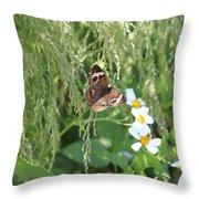 Butterfly 14 Throw Pillow