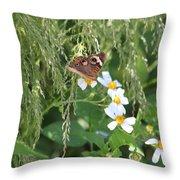 Butterfly 15 Throw Pillow