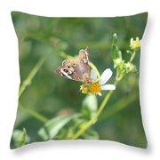 Butterfly 21 Throw Pillow