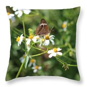 Butterfly 24 Throw Pillow