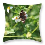 Butterfly 25 Throw Pillow