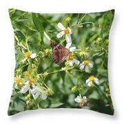 Butterfly 30 Throw Pillow