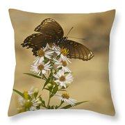 Butterfly 3321 Throw Pillow