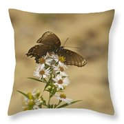 Butterfly 3322 Throw Pillow