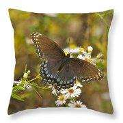 Butterfly 3325 Throw Pillow