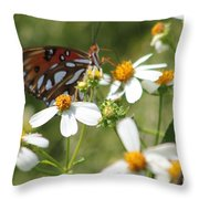Butterfly 41 Throw Pillow