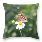 Butterfly 42 Throw Pillow
