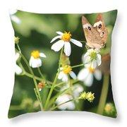 Butterfly 44 Throw Pillow