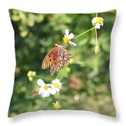 Butterfly 46 Throw Pillow