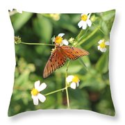 Butterfly 48 Throw Pillow