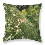 Butterfly 50 Throw Pillow