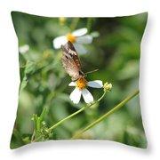 Butterfly 7 Throw Pillow